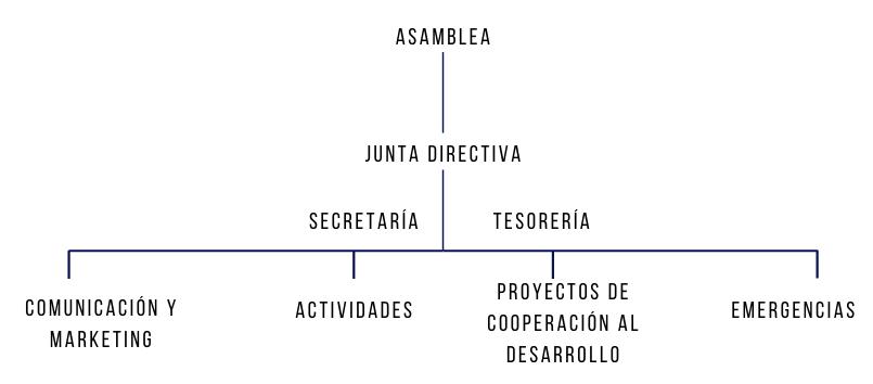 Organigrama organitzaió