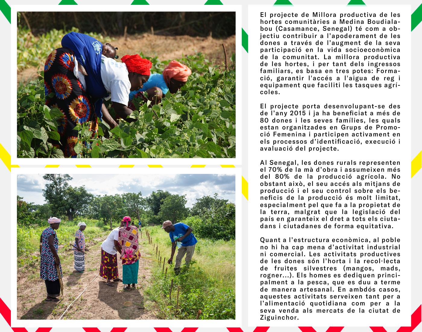 Projecte de Millora productiva de les hortes comunitàries a Medina Boudialabou