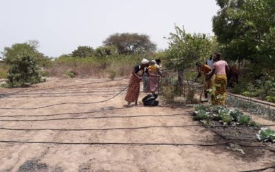 Instal·lació de sistemes de reg als horts de Sourouwakunda