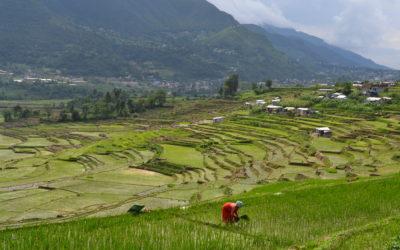 La Covid no dóna treva a Nepal