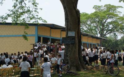 Històric 2 – ANY 2009: Construcció de l'Escola Dionisio Herrera a Dos Caminos